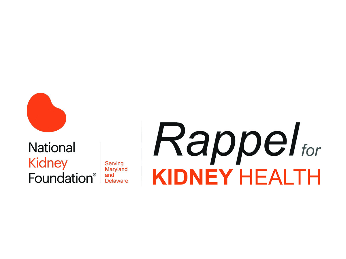 10th Annual Rappel for Kidney Health | Events | I95 Business